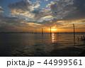 江川海岸 電柱 海の写真 44999561