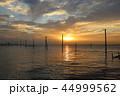 江川海岸 電柱 海の写真 44999562