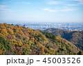 高尾山 風景 山の写真 45003526