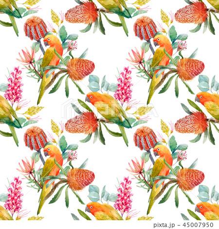 Watercolor tropical parrots vector pattern 45007950