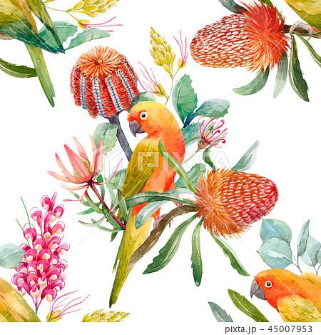 Watercolor tropical parrots vector pattern 45007953