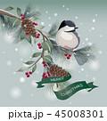 ベクター クリスマス カードのイラスト 45008301