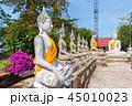 アユタヤ アユタヤ遺跡 バンコクの写真 45010023