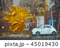 Autumn in the city 45019430