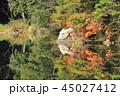 長野県 秋の中綱湖 45027412