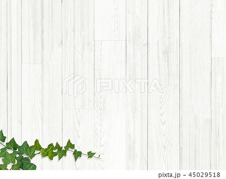背景-板-木目-壁-蔦-葉 45029518