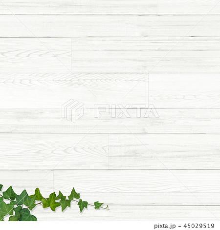 背景-板-木目-壁-蔦-葉 45029519