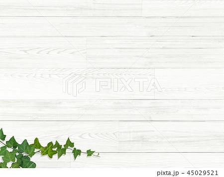 背景-板-木目-壁-蔦-葉 45029521