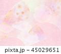 和柄 春 桜のイラスト 45029651