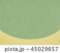 背景 金箔 和紙のイラスト 45029657
