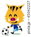 サッカーを楽しむ亥 45042227