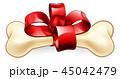 骨 わんこ クリスマスのイラスト 45042479