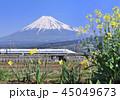 風景 富士山 世界遺産の写真 45049673