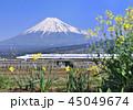 風景 富士山 世界遺産の写真 45049674
