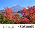 風景 富士山 世界遺産の写真 45050065
