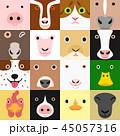 ベクター 動物 顔のイラスト 45057316