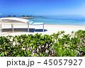 沖縄 エメラルドビーチ 海の写真 45057927