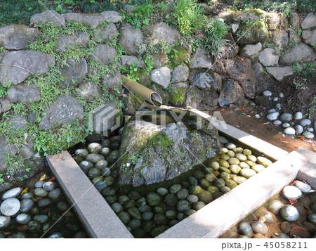我孫子市のハケの道にある湧水(瀧井孝作仮寓跡下) 45058211