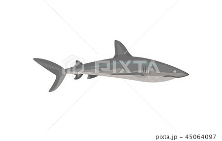 Flat vector icon of gray shark. Predatory fish with big fin on back. Marine fauna. Sea and ocean 45064097