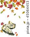 牡蠣 落ち葉 オイスターのイラスト 45064453