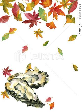 かき 牡蠣 落ち葉 45064453