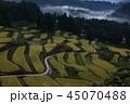 棚田 秋 風景の写真 45070488