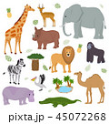 アフリカ大陸 動物 ベクトルのイラスト 45072268