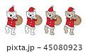 くま クマ 熊のイラスト 45080923