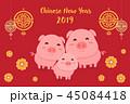 ぶた ブタ 豚のイラスト 45084418