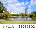 公園 芝生 広場の写真 45086302