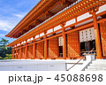 薬師寺 大講堂 寺の写真 45088698