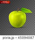 くだもの フルーツ 実のイラスト 45094087