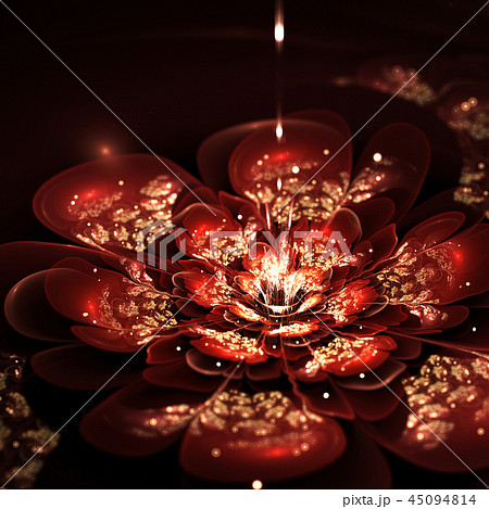 fractal flower with red and golden petals 45094814