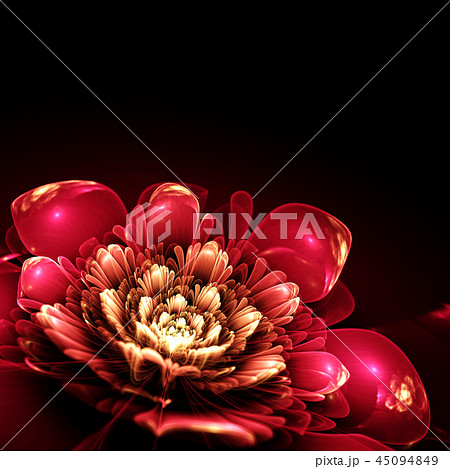 pink fractal flower 45094849