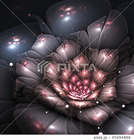 shadow abstract flower with pink details 45094866