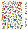 鳥 スケッチ 写生のイラスト 45111246