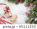 Christmas gift, gingerbread man, candy canes  45111555