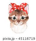 かわいい キュート 可愛いのイラスト 45116719