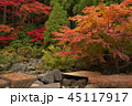 紅葉 箱根美術館 秋の写真 45117917
