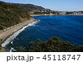 今井浜海岸を行く踊り子号 45118747