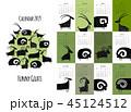 デザイン 柄 カレンダーのイラスト 45124512