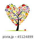 くだもの フルーツ 実のイラスト 45124899
