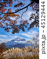 富士山 紅葉 世界遺産の写真 45129444