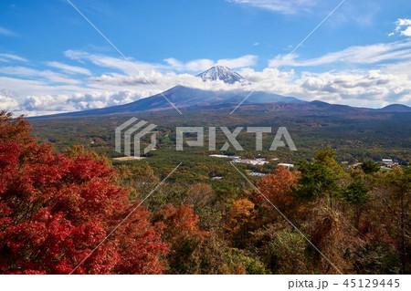 山梨県 紅葉 富士山 もみじ台の紅葉 45129445