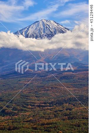 山梨県 富士山 もみじ台の風景 45129446