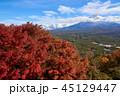 富士山 紅葉 世界遺産の写真 45129447