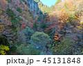長野県北葛沢の紅葉を空撮 45131848