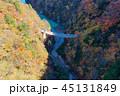長野県北葛沢の紅葉を空撮 45131849