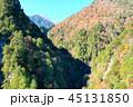 長野県北葛沢の紅葉を空撮 45131850