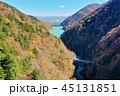 長野県北葛沢の紅葉を空撮 45131851